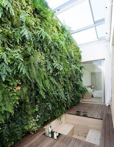 Glass roof: 50 ideas to transform your home garden rooms small spaces pa. Glass roof: 50 i Garden Bathroom, Bathroom Plants, Plant Lighting, Pergola Lighting, Lighting Ideas, Pergola Shade, Diy Pergola, Pergola Kits, Vertical Garden Design