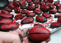 How To Paint Stones and Rocks: Painted Lady Bugs and Ladybirds http://viking305.hubpages.com/hub/How-To-Paint-Ladybird-Stones-Painted-Ladybirds-on-Small-Pebbles-painting-acrylic-sell-craft-fairs