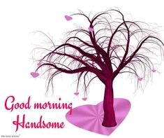 Looking for for ideas for good morning handsome?Browse around this website for very best good morning handsome ideas. These funny pictures will make you happy. Good Morning Handsome Quotes, Good Morning Love Text, Good Morning Husband, Romantic Good Morning Messages, Good Morning Texts, Good Morning Images, Morning Quotes, Gd Morning, Morning Post