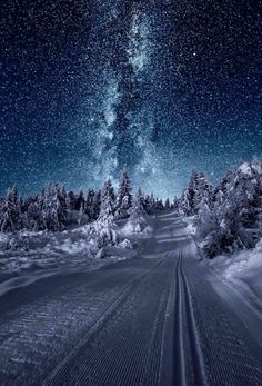 Winter night in Bohemian-Moravian Highlands, Czechia