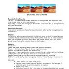This is a science lesson that engages students to think about how weathering and erosion shape the shorelines. With the questions found in this les...