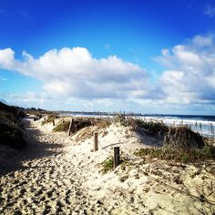 AFAR.com Highlight: A Local's Beach in Pacific Grove on California's Wild Central Coast by Jenna Francisco