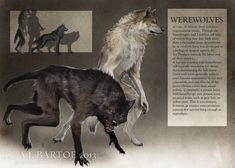 Werewolves by kyuubifred.deviantart.com on @DeviantArt