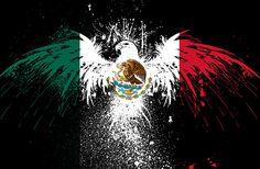 Find the best Mexican Flag Wallpaper iPhone 6 on GetWallpapers. We have background pictures for you! Mexican Flag Tattoos, Mexican Flag Eagle, Mexican American Flag, Mexican Flags, Mexican Shirts, Mexico Wallpaper, Eagle Wallpaper, Hd Wallpaper, Iphone Wallpapers