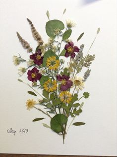 Pressed flower art with all kinds of flowers, both local and from Turkey.
