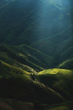 rice terraces, yen bai province, vietnam | nature + landscape photography #adventure