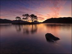 Loch Maree, Scotland. I camped on one of those islands on a school trip. One of my best moments ever.