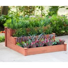 Leisure Season W x L x H Medium Brown Raised Garden Bed at Lowe's. Easy to assemble, roomy, three-tiered raised garden bed provides depth for growing various deep-rooted plants and vegetables. The elevated design is great Wood Planters, Planter Boxes, Garden Planters, Planter Bench, Balcony Garden, Wood Raised Garden Bed, Raised Beds, Sloped Yard, Garden Boxes