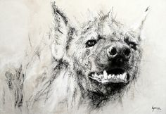 Animal Sketches, Animal Drawings, Drawing Sketches, African Wild Dog, African Art, Wild Dogs, Wildlife Art, Fanart, Art Images