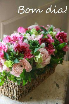 Lindura de rosas