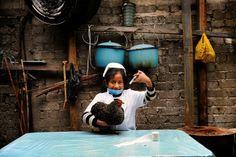 """Djarida is 8 jaar en woont in San Cristobal de las Casas (Chiapas), Mexico. Djarida's vader woont niet meer thuis en haar moeder is huishoudster in de stad.  Djarida: """"Veel meisjes hier mogen niet naar school of maar heel kort. Daarna moeten ze helpen in huis, gaan werken of trouwen. Ik ga gelukkig wel elke dag naar school. Als ik groot ben, wil ik dierenarts worden. Ik moet daar heel hard voor studeren, maar het gaat me echt lukken. Dat weet ik zeker!"""" Photo: Chris de Bode"""