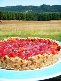 Raw Vegan Cherry Pie....Another reason I'm glad I enjoy a good cow now and then...no offense vegans of the world...