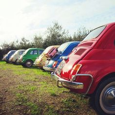 Pick one.. which color do you want? #Fiat500