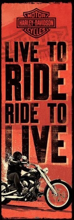Live to Ride to Live