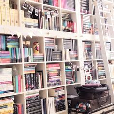 books mean a lot to me — comiziale: My summer starts tomorrow and I can...