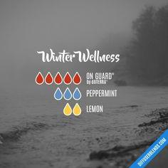 Winter Wellness - Essential Oil Diffuser Blend