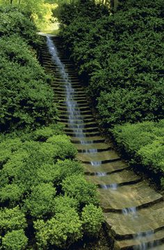 umberto pasti garden - Поиск в Google
