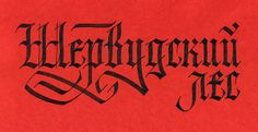Calligraphy and lettering (2013) on Behance
