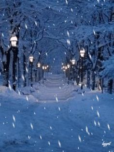 Winter night and the snow goes on and on. Christmas Scenery, Winter Scenery, Country Christmas, Christmas Art, Winter Christmas, I Love Snow, I Love Winter, Winter Night, Winter Images