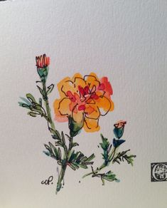 Charming Garden Watercolor Card I have painted this card with watercolor and ink. I have painted this on heavy watercolor card stock. This card is and blank inside. It is an original. Comes with a white envelope in a protective sleeve. Watercolor And Ink, Watercolor Flowers, Watercolor Paintings, Watercolors, Body Art Tattoos, Sleeve Tattoos, Tattoo Arm, Tatoos, Marigold Tattoo