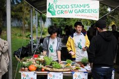 Food Stamps For Gardening