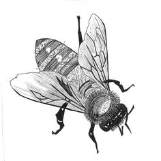 Bee sketch by bMethe, via Flickr