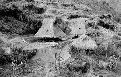 Igorot huts at Cordillera Central Mountains on Northern Luzon Island, Philippines, Philippines Culture, Manila Philippines, Filipino Culture, Baguio City, Visayas, University Of Wisconsin, Pacific Ocean, Vintage Pictures, Philippines