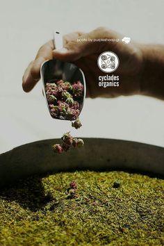 www.cycladesorganics.gr cyclades thyme