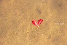 _na água cristalina, boiava um coração | Flickr – Compartilhamento de fotos!