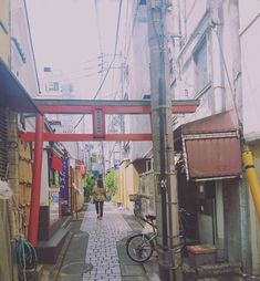 On a road of discovery exploring the back streets of #tokyo ⛩ I love wandering around a big city and getting lost. I found the area of #jiyugaoka refreshing and without tourists. It has the trendies shops and cafes to explore. #offthebeatenpath in Tokyo 😄......#tokyoguide #tokyoshopping #toriigate #hiddengem #backstreets #seejapan #discovertokyo #responsibletravel #seekmoments #momentsofmine #postcardsfromtheworld #photographyislifee #postcardfromtheworld #girlsaroundtheworld