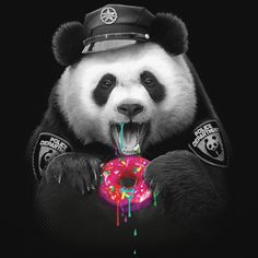 Adam Lawless Donut Cop
