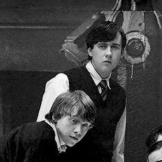 Harry Potter Icons, Harry Potter Feels, Harry Potter Draco Malfoy, Harry Potter Pictures, Harry Potter Aesthetic, Harry Potter Cast, Harry Potter Fan Art, Harry Potter Universal, Harry Potter Fandom