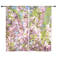 Pink Cherry Blossoms Curtains