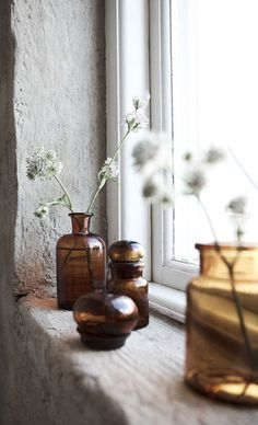 amber brown apothecary jars and Queen Anne's lace flowers