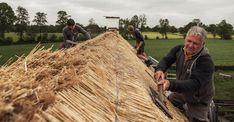 rietdekker aan het werk buitenpracht van den berg Wood, Madeira, Woodwind Instrument, Wood Planks, Trees, Wood Illustrations, Woodworking, Woods
