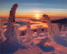 Rime ice on Summit of Mt. Spokane