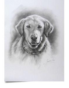 Custom 12 x 16 pencil drawing of your dog or cat by EwaGawlik