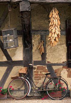 drying corn, wine region, ferme de la Foret, St. Trivier de Courtes, Burgundy, France. Photo: Doug Pearson,  Jon Arnold Images