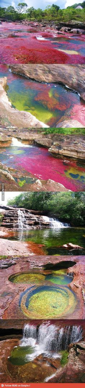 Seven Colors River, Colombia