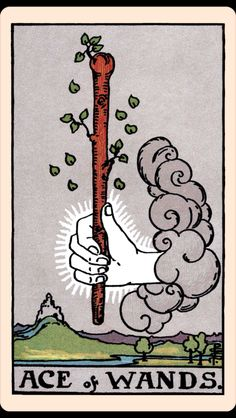 PRESENT: Ace of Wands | 7 Tarot Readings By People Who Have No Idea How To Read Tarot Cards
