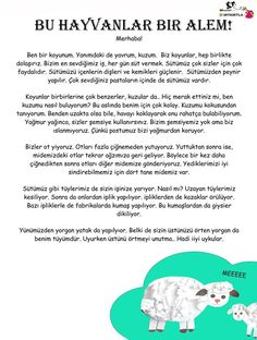 Learn Turkish, Lessons For Kids, Science For Kids, Stories For Kids, Preschool Activities, Wordpress Theme, Cool Style, Kindergarten, Classroom