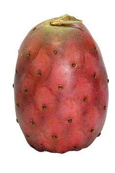 Benefits of Sonoran Nopal Cactus Fruit