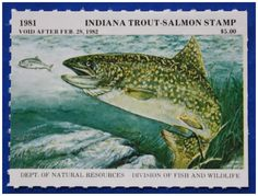 Indiana fish identification indiana fishing regulation for Trout fishing indiana