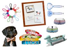 Well-Groomed Girl: Dog Days of Summer - A gift guide for your pup-obsessed bride-to-be #wedding