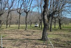 http://misierradegata.com/ruta-4x4-y-senderismo-al-dolmen-del-maton-caceres/ Ruta 4x4 al Dolmen del Matón en Caceres