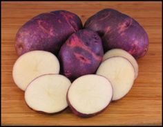 Purple Viking potato is drought resistant and a yielder of large tubers. Its unique taste is loved by many and will get sweeter in long term storage.