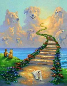 Rainbow Bridge All Dogs Go to Heaven Collie St Bernard Retreiver Matted Art Print Pet and Poem Sympathy Memorial Stairway to Heaven All Dogs, I Love Dogs, Cute Dogs, Dogs And Puppies, Doggies, Souvenir Animal, Animals And Pets, Cute Animals, Pet Loss Grief