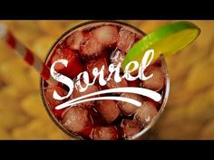 ▶ Sorrel | Thirsty For ... - YouTube Sorrel comes from the sepals of the Roselle plant, which is also used to make hibiscus tea and agjua de Jamica
