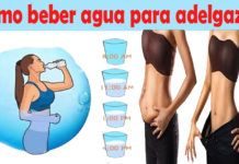 Cómo tomar agua para perder peso Lower Belly Workout, Lose 40 Pounds, Detox Drinks, Burns, Health Fitness, Knowledge, Abs, Family Guy, Nutrition