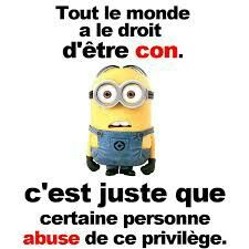 Minions 1, Minions Quotes, Funny French, Smiles And Laughs, Funny Cards, Good Vibes Only, Wtf Funny, I Laughed, Laughter